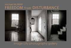Freedom from Disturbance by Michael Murray