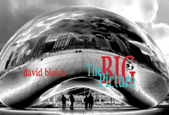 The Big Picure by David Bleich