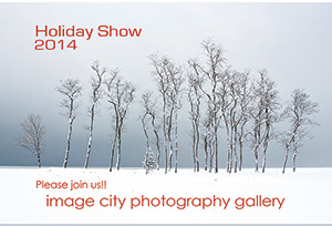 Holiday Show Card 2014