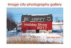 Holiday Show 2017 Card